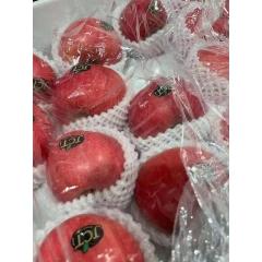 烟台红美人苹果 一箱